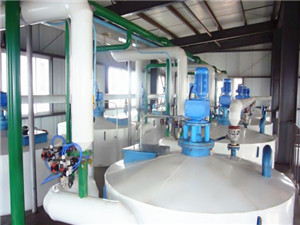 palm kernel oil extraction production process and profit