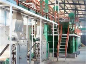 20tpd palm oil refinery plant&fractionation plant to nigeria