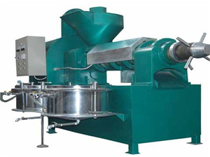 automatic oil press machine stainless steel cold hot press