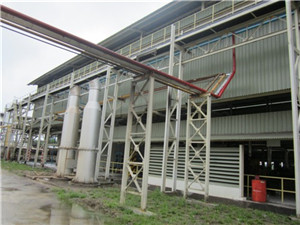 palm oil and palm kernel oil extraction process - palm oil